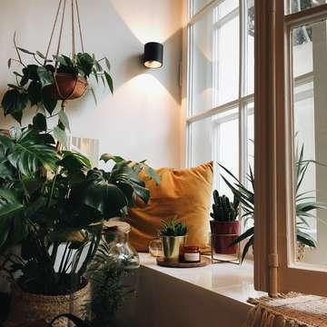 το δωμάτιό μου, τα λουλούδια και το μαξιλάρι μου