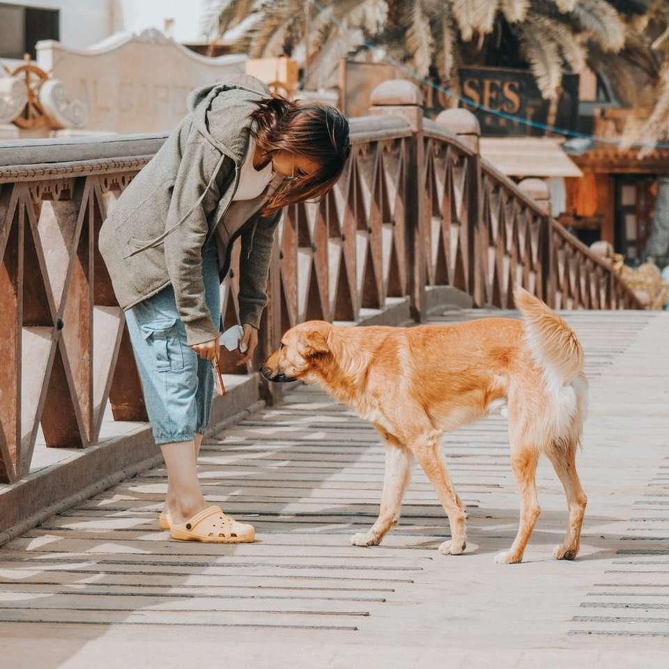 Vrouw met hond op de brug -  (10×10)