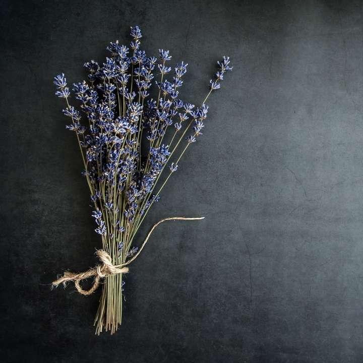 paarse lavendelbloem
