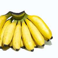 Banane | Echte Banane