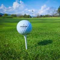 vit golfboll