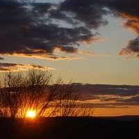 západ slunce mezi stromy