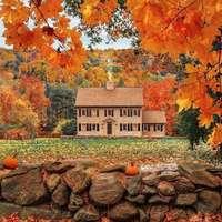 kunyhó arany ősze