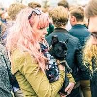 kvinna som bär svart hund