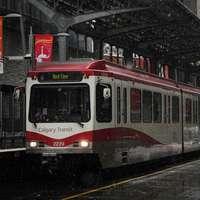 tren rojo y blanco en el carril