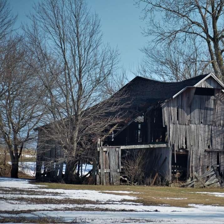 casa de madeira marrom perto de árvores nuas durante o dia - Antigo celeiro de madeira em colapso desbotado (5×5)