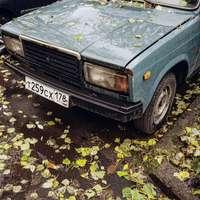 kék autó sárga levelekkel a földön
