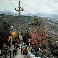 emberek az utcán, a fák és a hegy közelében
