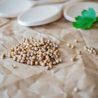 braune Bohnen auf weißer Keramikplatte