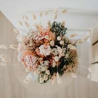 ροζ και άσπρα λουλούδια σε λευκά υφάσματα