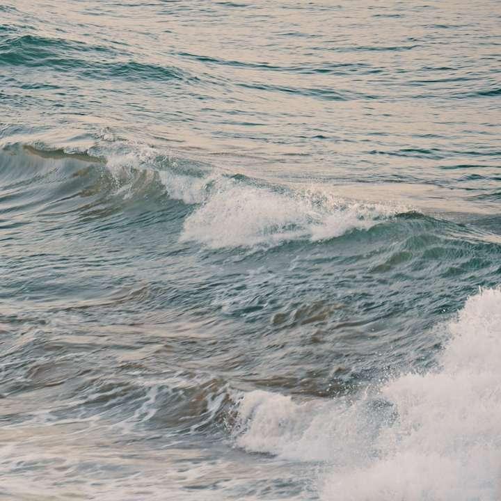 Ondas do oceano batendo na costa durante o dia