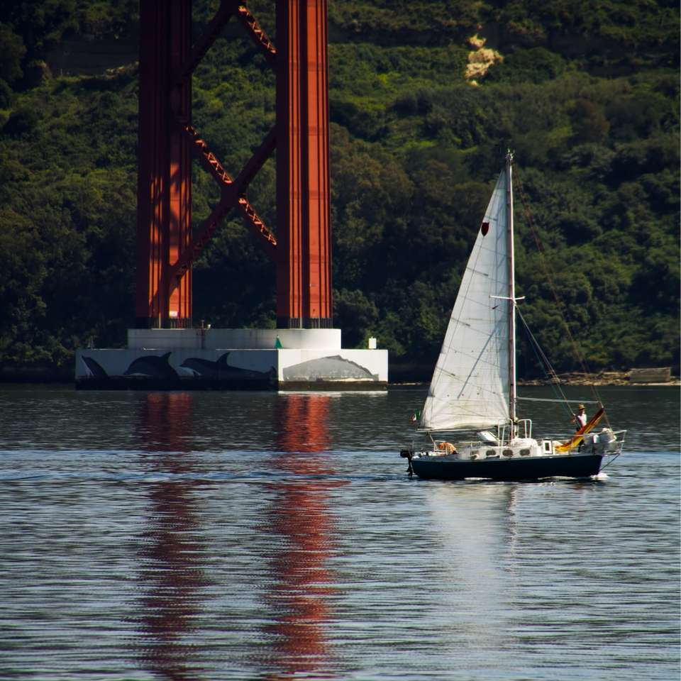 white sailboat on body of water during daytime sliding puzzle