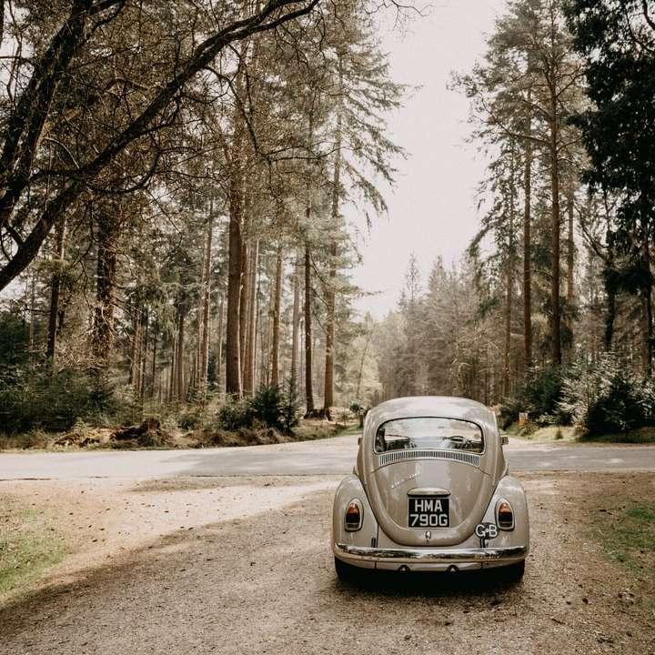 white porsche 911 parked on dirt road near trees