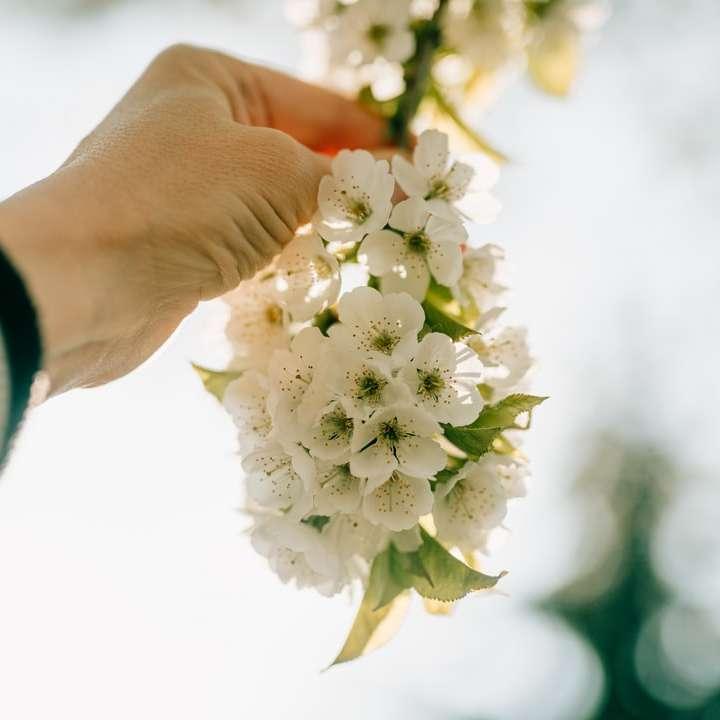 person holding white flower bouquet online puzzle