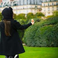 woman in black coat standing on green grass field
