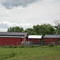 Червена и бяла къща в близост до зелени дървета