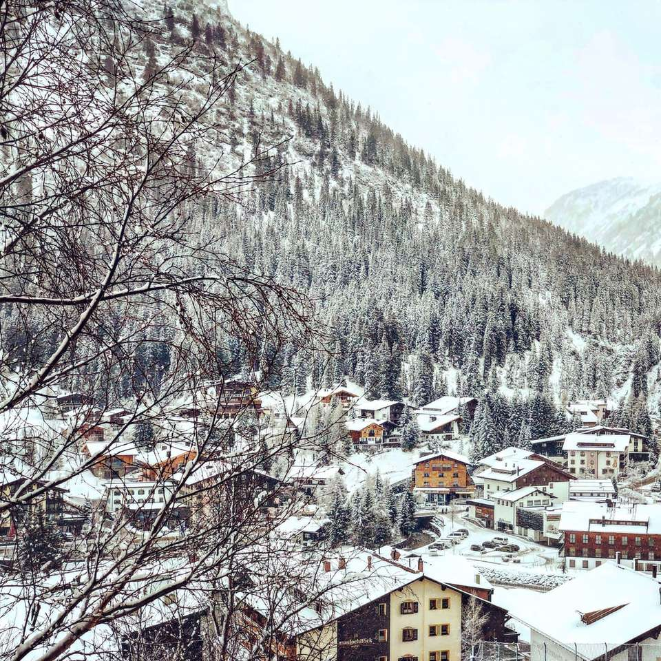 brown and white houses near snow covered mountain online puzzle